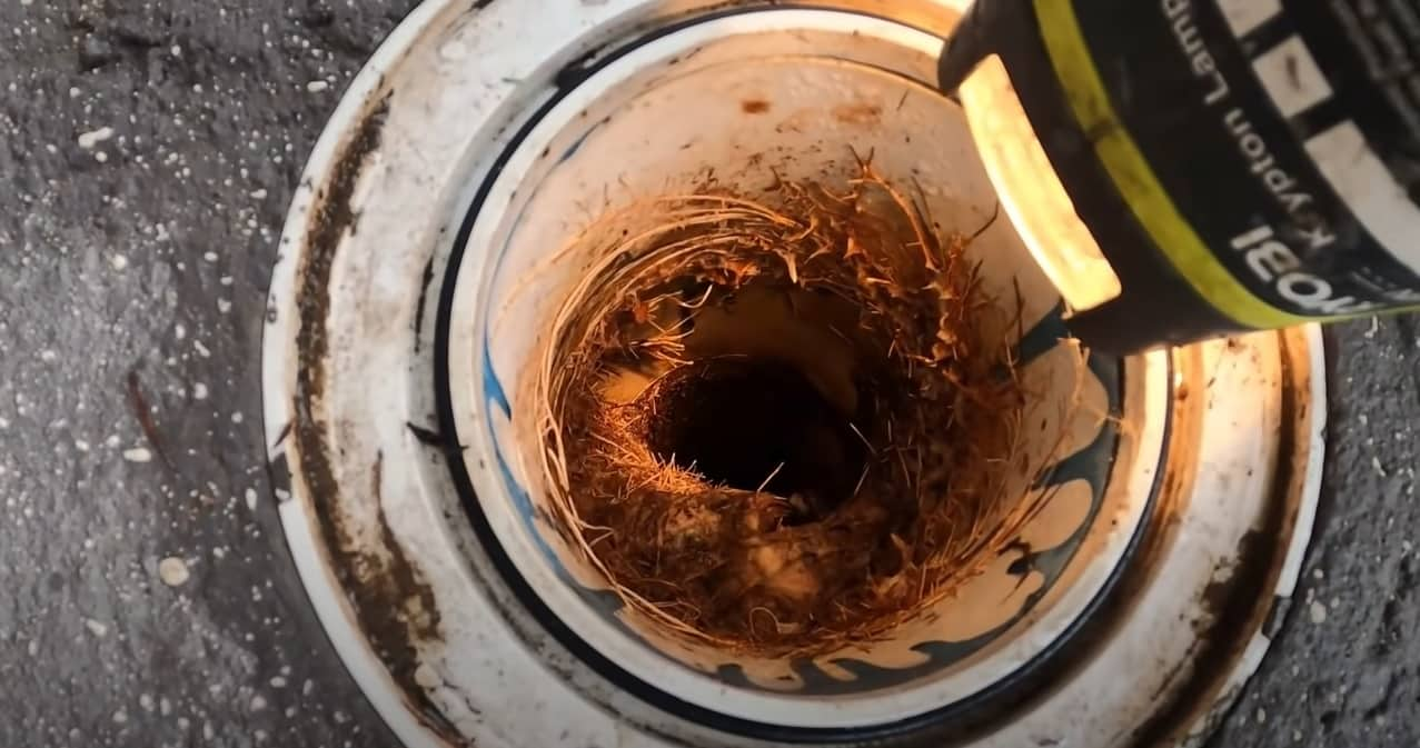 broken sewer pipes, cracked sewer joints with tree roots